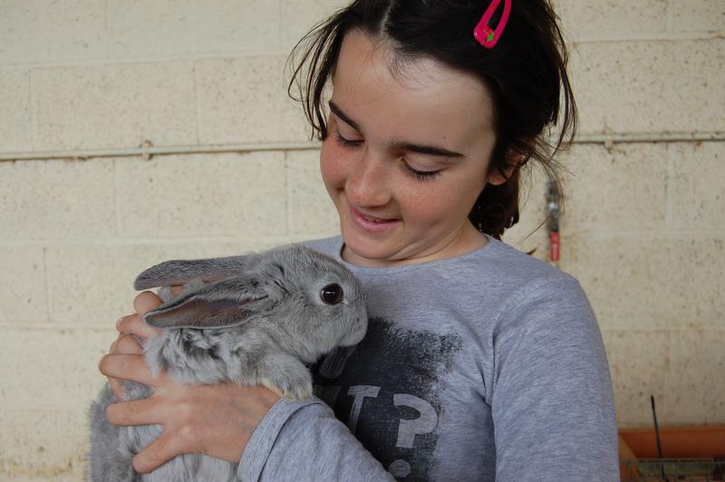 El conillet bigotis